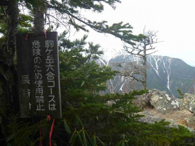 gw_kaikoma2_14